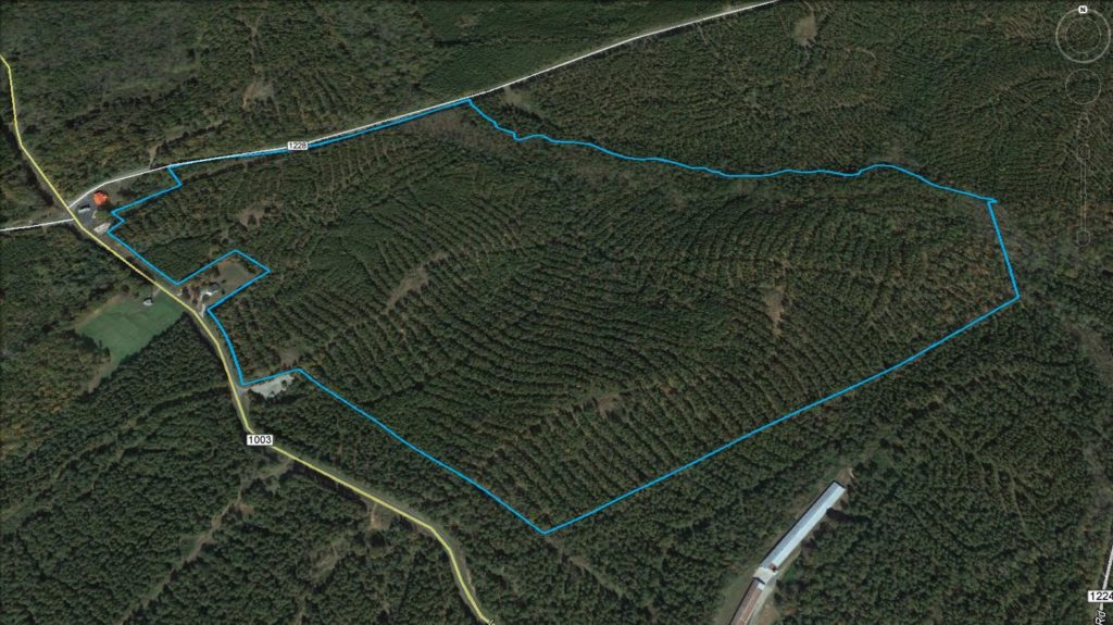 White Store Rd 158 Acre Tract